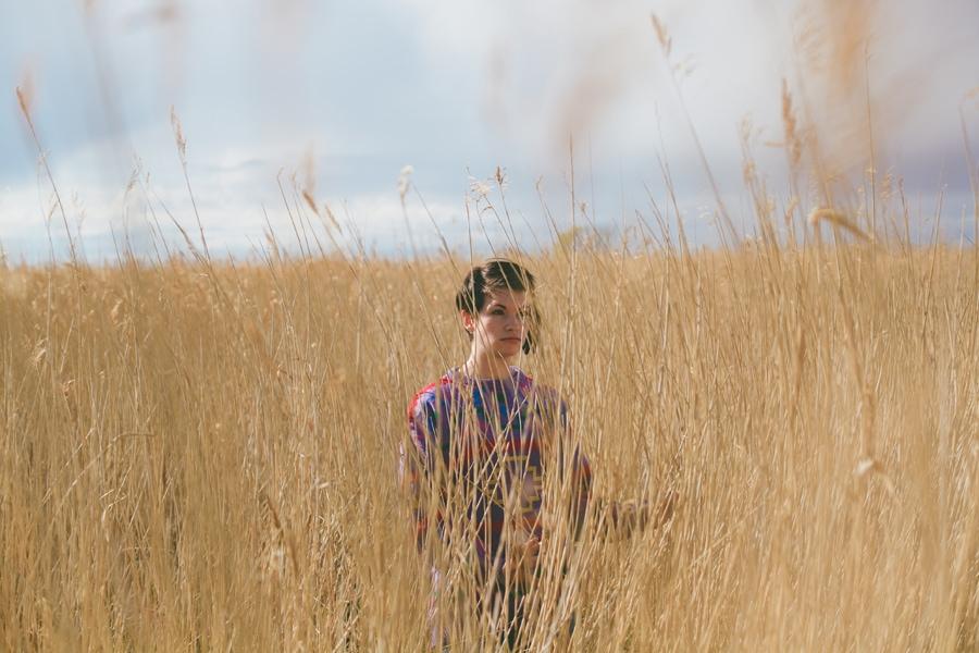 cat in a field, norfolk