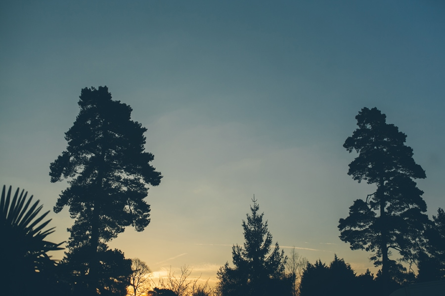 sun setting behind the trees at Copthorne Hotel wedding