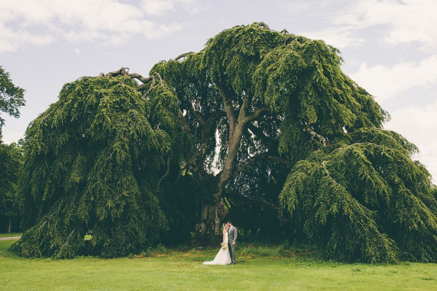 wedding portraits under a tree at bellinter house