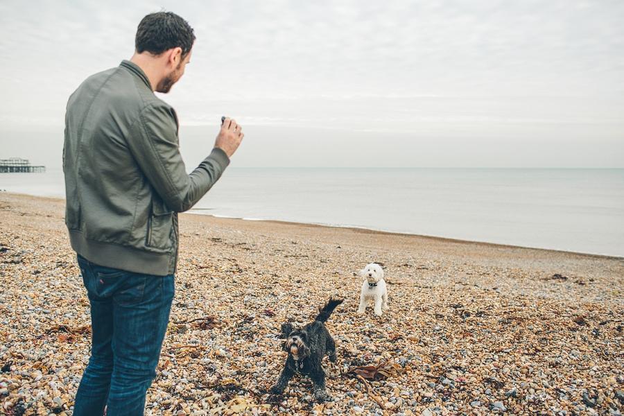 daniel with his dogs in brighton