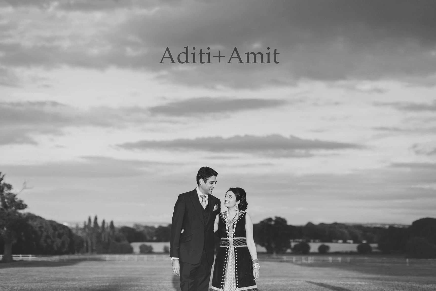 aditi and amits hindu wedding