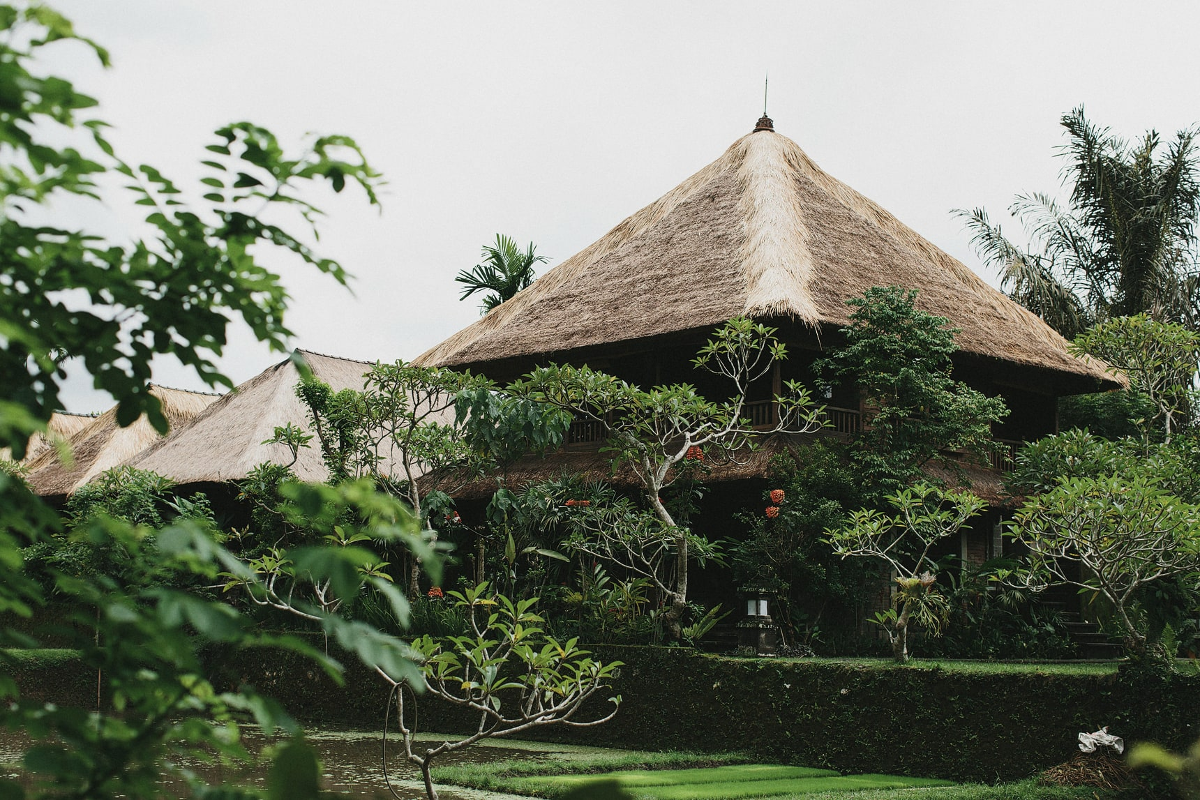 ubud bali travel photography