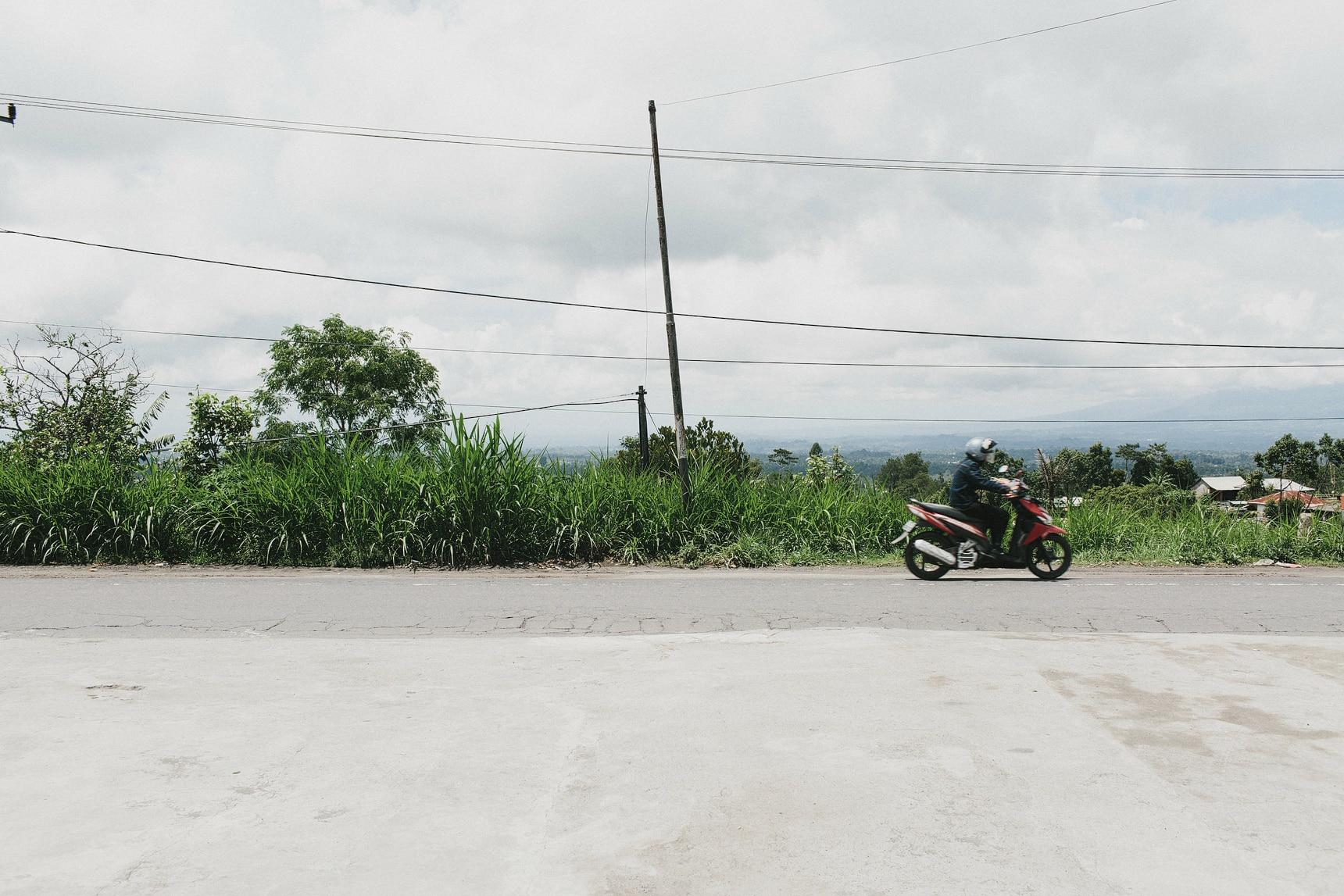 ubud travel photography