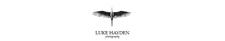 London Wedding Photographer | Essex Wedding Photographer | UK logo